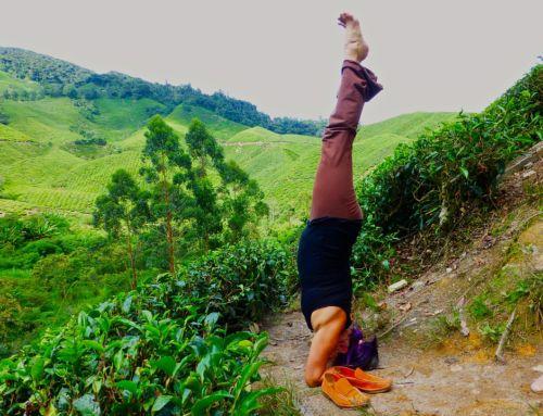 Headstand Yoga Benefits