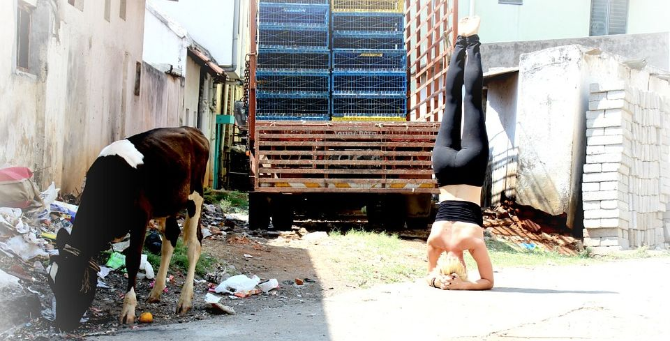 Woman doing a headstand pose