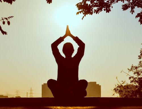 Best Yoga DVDs for Beginners Over 50